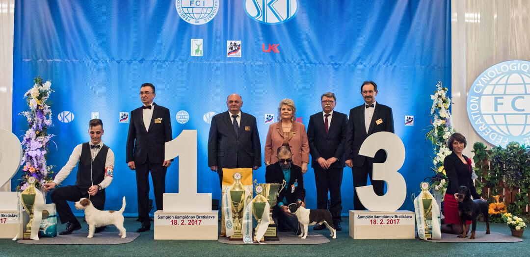 Slovak Champion of Champions 18.2.2017