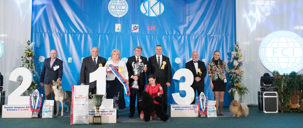 Champion of champions Bratislava, 17.2.2108
