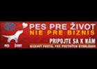 logo-ppz-120px